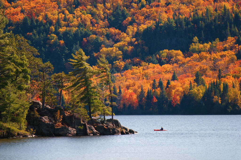 person canoeing on a water course on a fall setting with red and yellowing trees