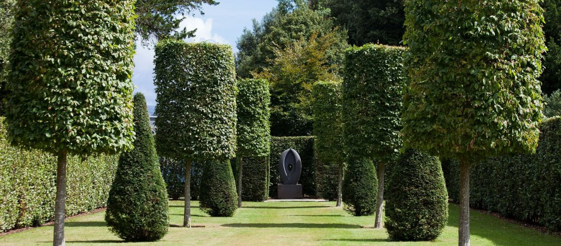 beautiful garden with pruned trees